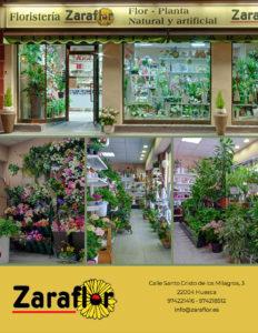 Interior y Fachada de nuestra floristería en Huesca